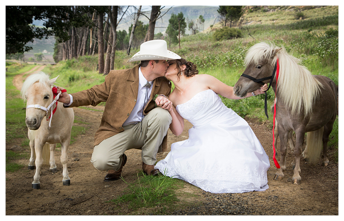 bride and groom kissing with miniature horses at Linwood Farm, Clarens