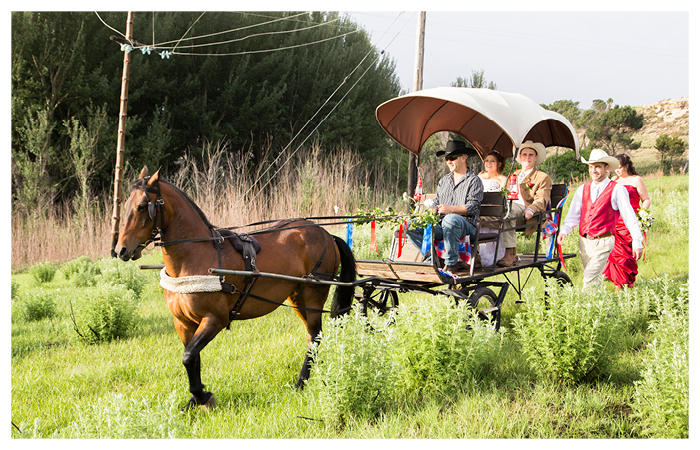 wedding photography clarens bride and groom in carriage with horse