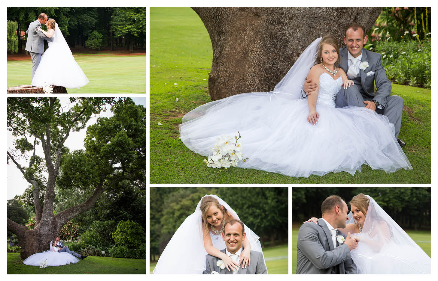 happy bride and groom next to big tree